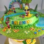 torte per bambini 2014 (19)
